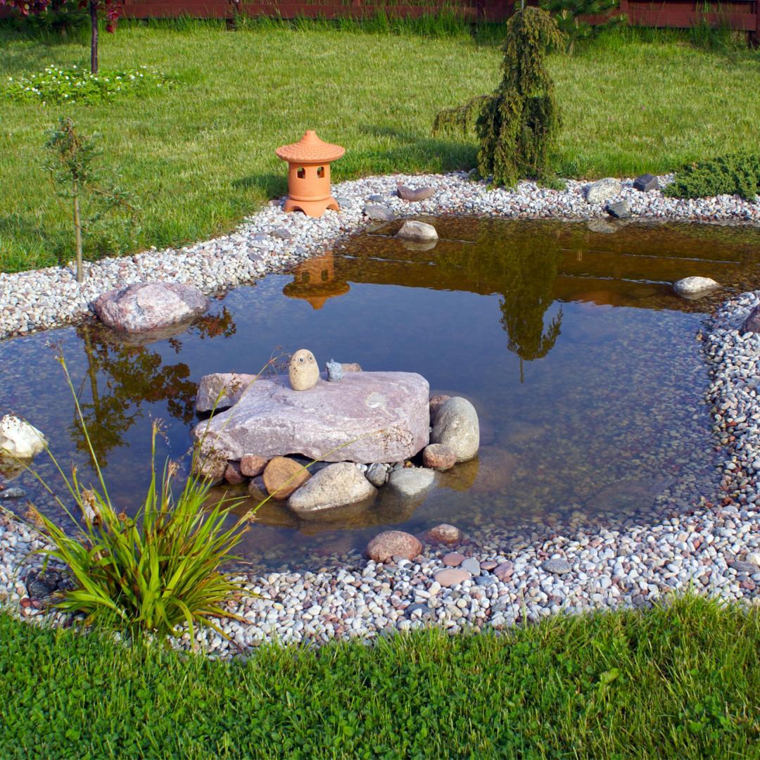 Entretien de jardins la bass e lille lens aux jardins for Entretien jardin 33