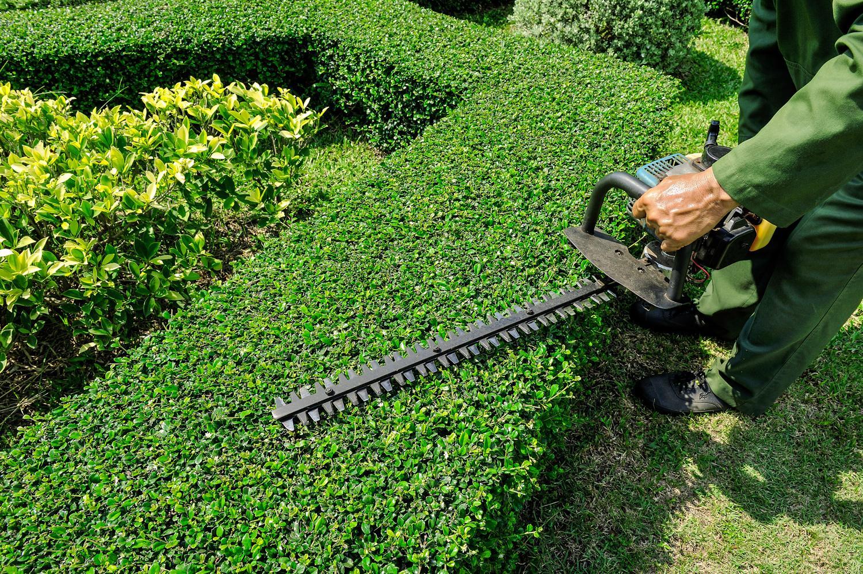 Entretien de jardins la bass e lille lens aux jardins for Cherche personne pour entretien jardin